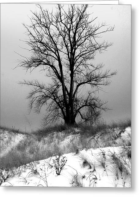 Michigan Snow Greeting Card by Gregory Dyer