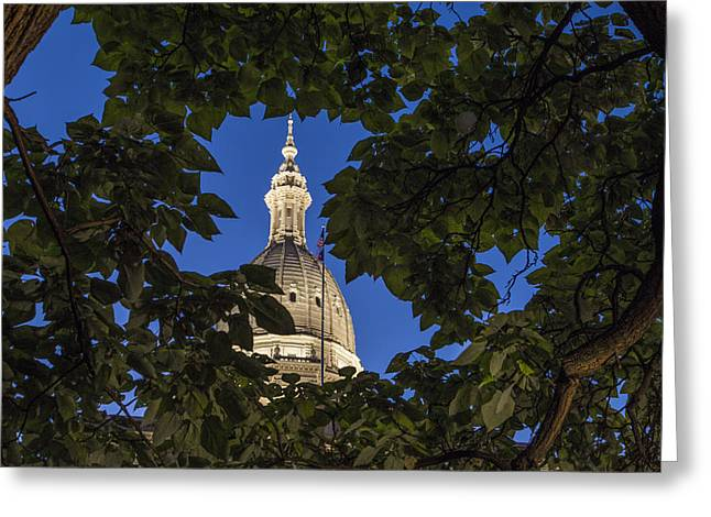 Michigan Ave Greeting Cards - Michigan State Capital and Tree Greeting Card by John McGraw