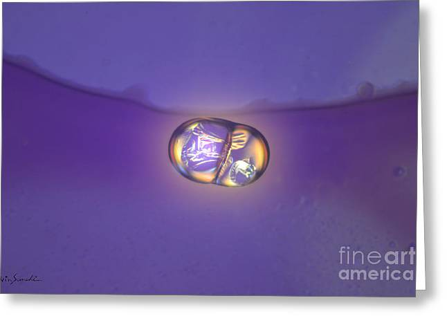 Vin Kitayama Greeting Cards - Micro Art Coffee birth 1  Greeting Card by Vin Kitayama
