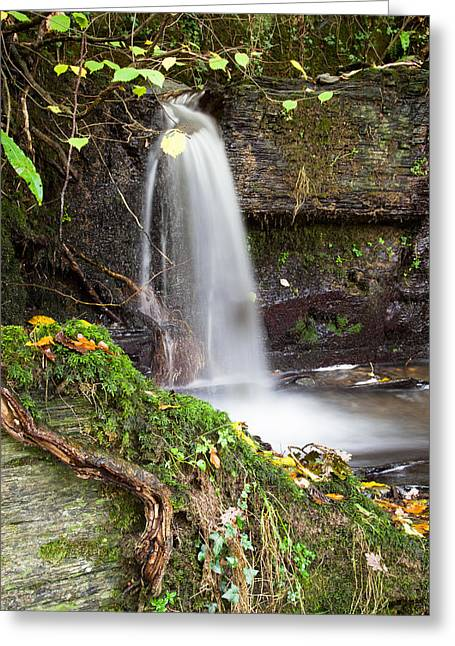 Black Rock Yellow Leaves Water Greeting Cards - Micro Waterfall Greeting Card by Christine Smart