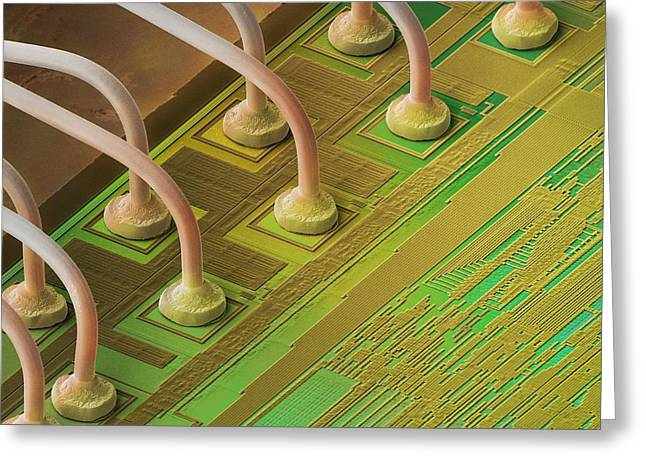 Processor Greeting Cards - Microchip Connectors, Sem Greeting Card by Power And Syred