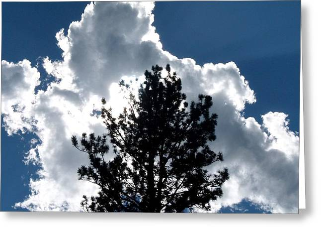 Mid Summer Greeting Cards - Mid Afternoon Silhouette Greeting Card by Will Borden