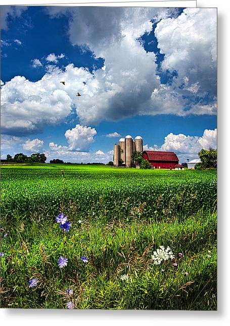 Geographic Greeting Cards - Mid Day Greeting Card by Phil Koch