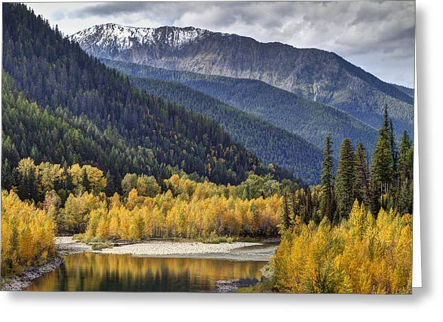 Mountain Fork Greeting Cards - Middle Fork Brillance  Greeting Card by Mark Kiver