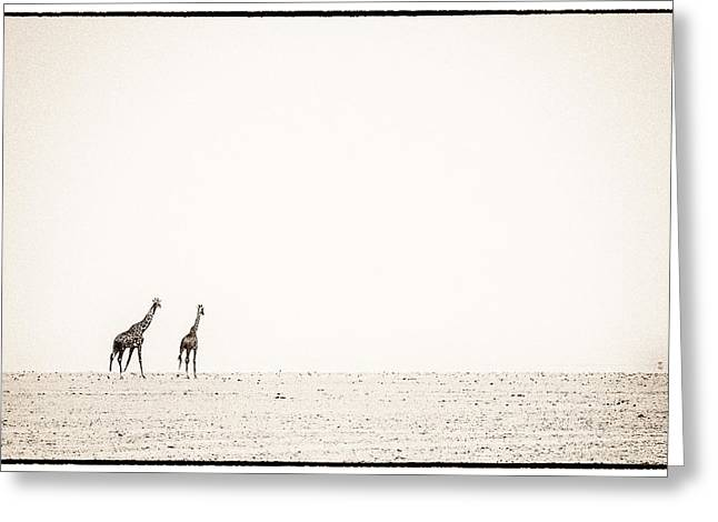 Walk Off Greeting Cards - Middle Of Nowhere 3 Greeting Card by Mike Gaudaur