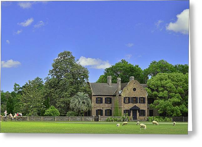 Historic Us Open Greeting Cards - Middleton Place Plantation Greeting Card by Allen Beatty