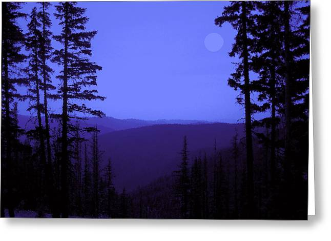 Midnight Blue Greeting Card by Ann Powell