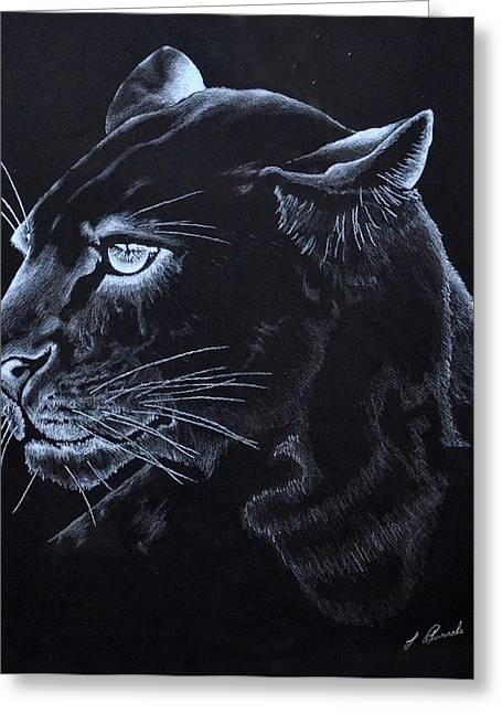 Mt Drawings Greeting Cards - Midnight Cougar Greeting Card by Larry Edwards