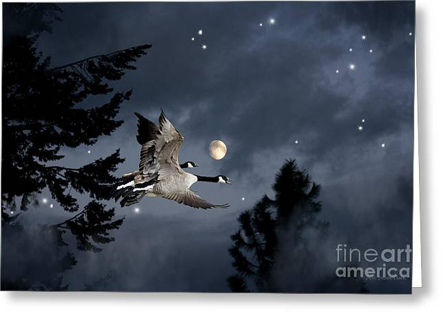 Canada Geese Greeting Cards - Midnight Flight Greeting Card by Reflective Moment Photography And Digital Art Images