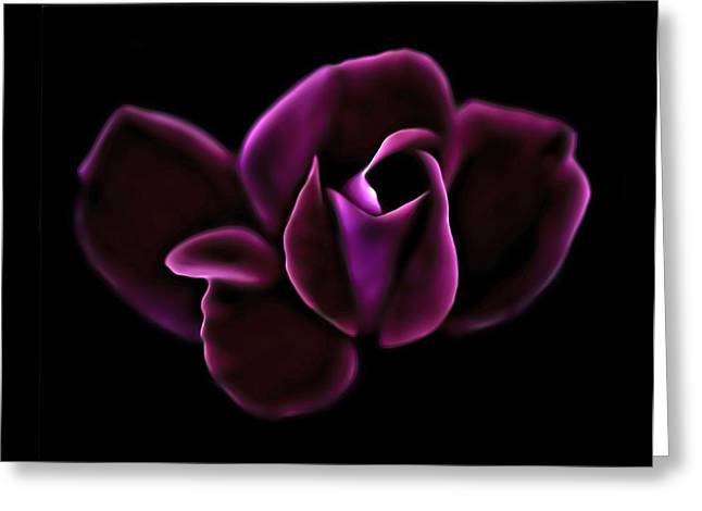 Knockout Greeting Cards - Midnight Knockout Rose Greeting Card by Walt Foegelle
