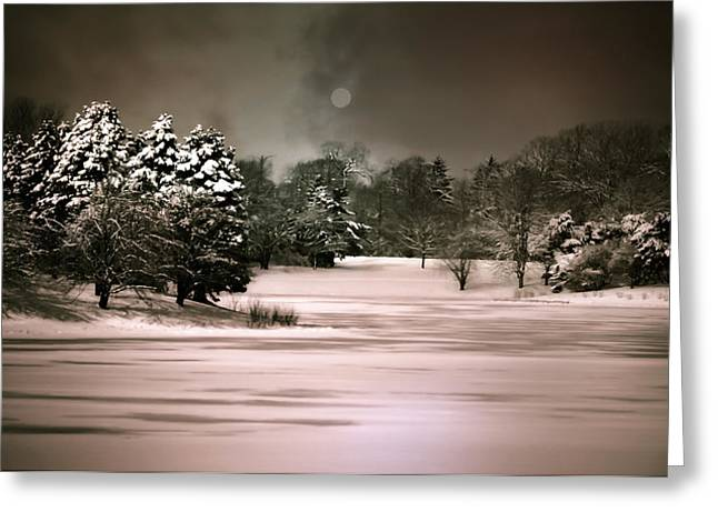 Snow-covered Landscape Greeting Cards - Midnight Stillness Greeting Card by Julie Palencia