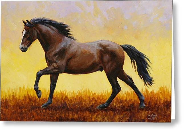 Horses Running Greeting Cards - Midnight Sun Greeting Card by Crista Forest