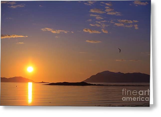 Sortland Greeting Cards - Midnight Sun Norway Greeting Card by Babak Tafreshi