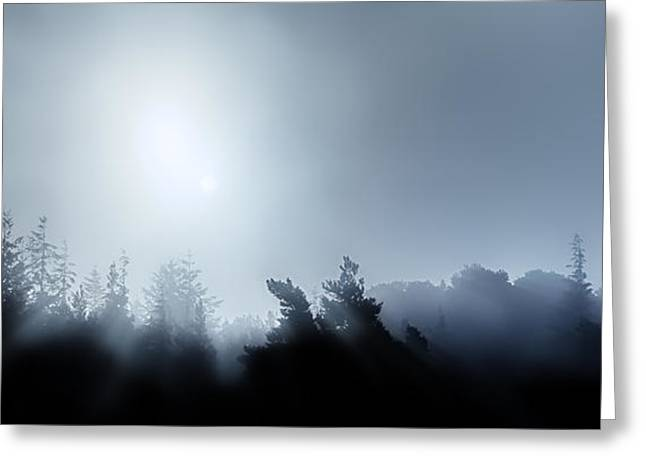 Moonlit Night Greeting Cards - Midnight treetops in fog Greeting Card by Simon Bratt Photography LRPS