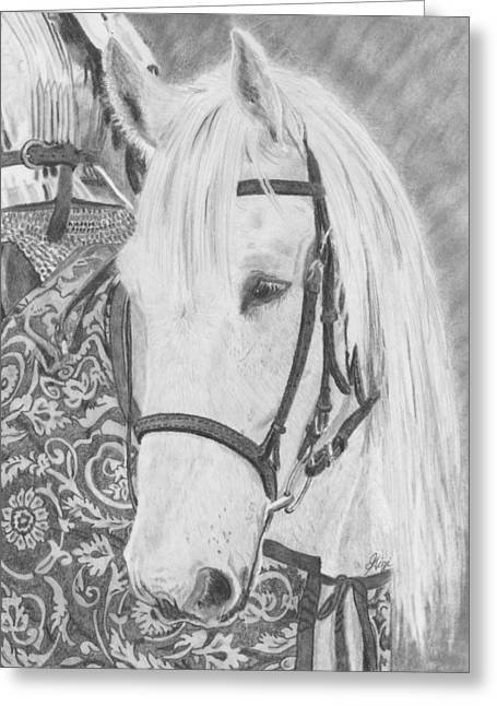 Midsummer Knight Majesty Greeting Card by Gigi Dequanne