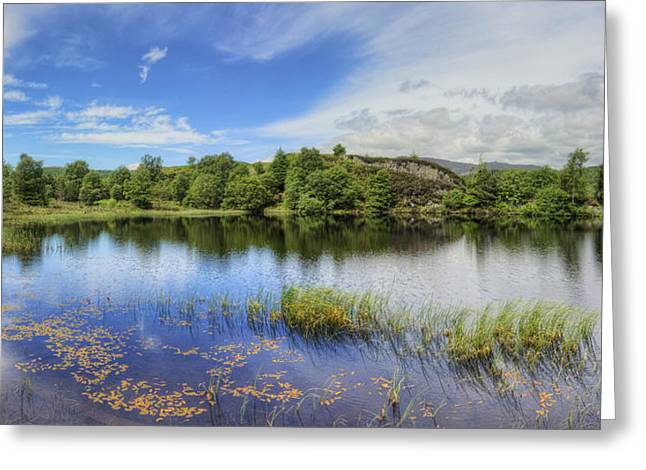 Water Scape Greeting Cards - Midsummer Lake Greeting Card by Ian Mitchell