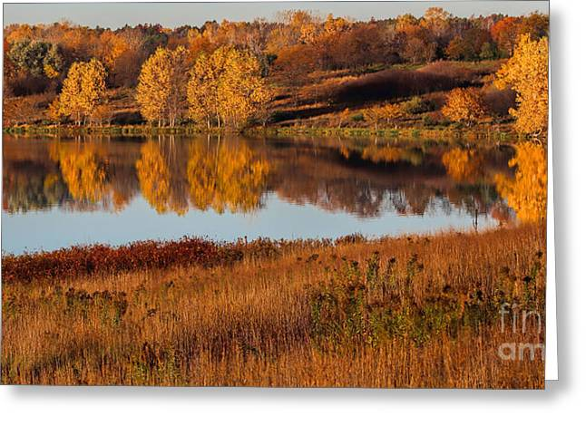 Chalco Hills Recreation Area Greeting Cards - MIdwest Fall Greeting Card by Elizabeth Winter