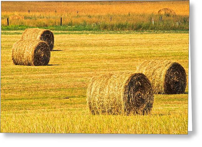 Midwest Farming Greeting Card by Frozen in Time Fine Art Photography