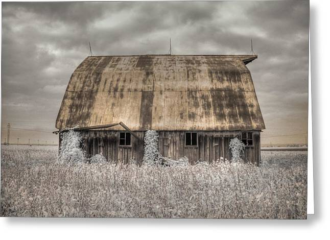 Process Greeting Cards - Midwestern Barn Greeting Card by Jane Linders