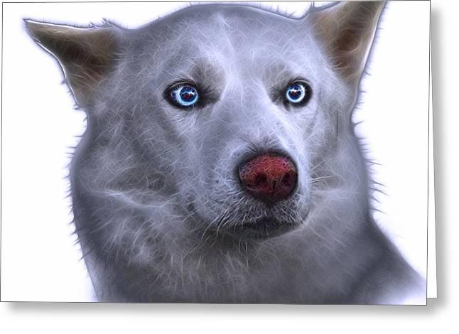 Husky Greeting Cards - Mila - Siberian Husky - 2103 - WB Greeting Card by James Ahn
