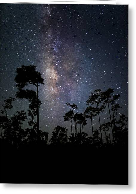 Heaven Greeting Cards - Milky Way Over the Everglades Greeting Card by Andres Leon