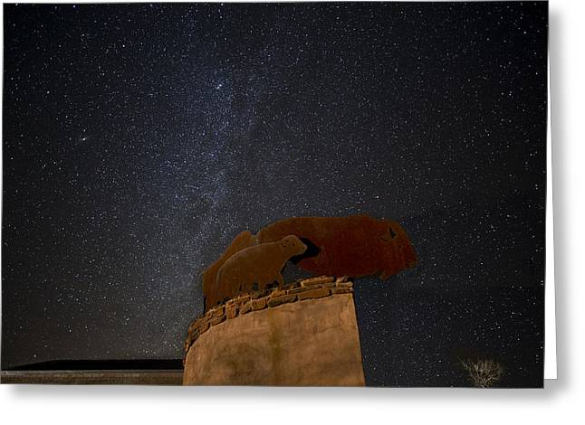 Caprock Canyons State Park Greeting Cards - MilkyWay and Bison Greeting Card by Melany Sarafis