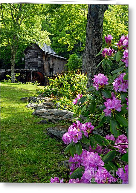 Glade Creek Greeting Cards - Mill and Rhododendrons Greeting Card by Larry Ricker
