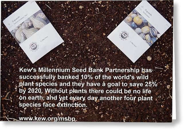Local Food Greeting Cards - Millennium Seed Bank Partnership Greeting Card by Jon Simmons