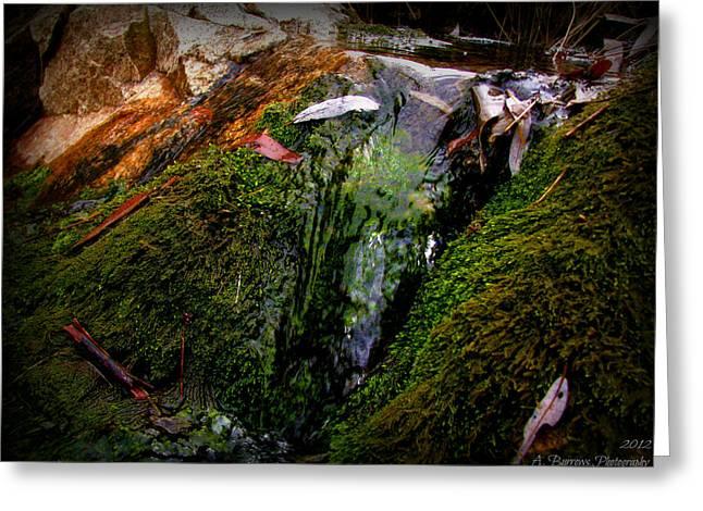Prescott Greeting Cards - Miller Creek Falls Greeting Card by Aaron Burrows