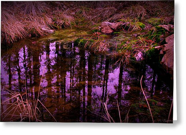 Prescott Greeting Cards - Miller Creek Reflections Greeting Card by Aaron Burrows