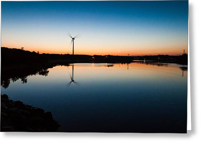 Lee Costa Greeting Cards - Millie at sunrise Greeting Card by Lee Costa