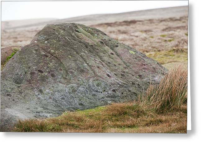 Millstone Grit Boulder Greeting Card by Ashley Cooper