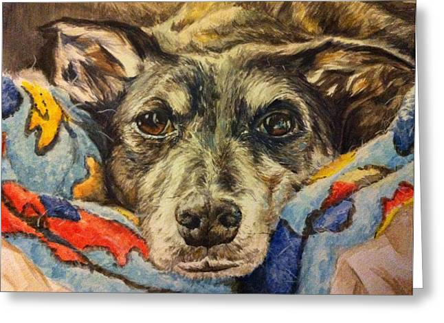 Lurcher Greeting Cards - Milo the Lurcher Greeting Card by Pet Portraits by Julie Bunt