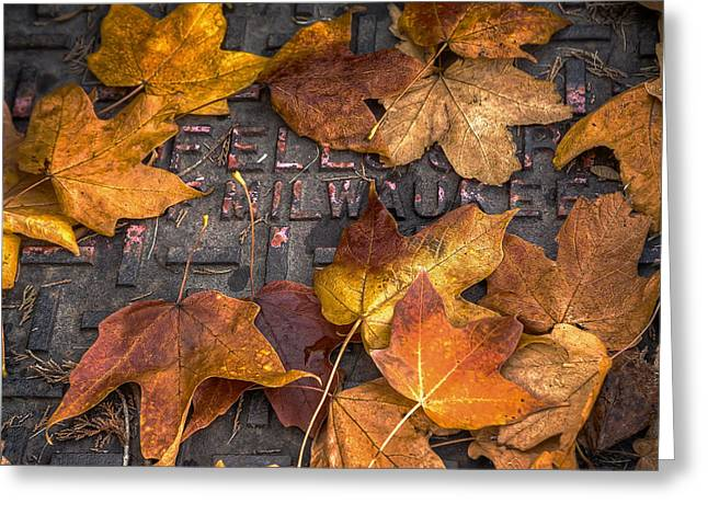 Leaf Change Greeting Cards - Milwaukee Autumn Greeting Card by Scott Norris