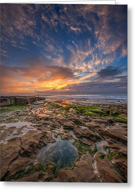 Ocean. Reflection Greeting Cards - Mimic Greeting Card by Peter Tellone