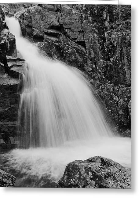 Taum Sauk Greeting Cards - Mina Sauk Falls on Taum Sauk Mountain in the Ozarks Greeting Card by Greg Matchick