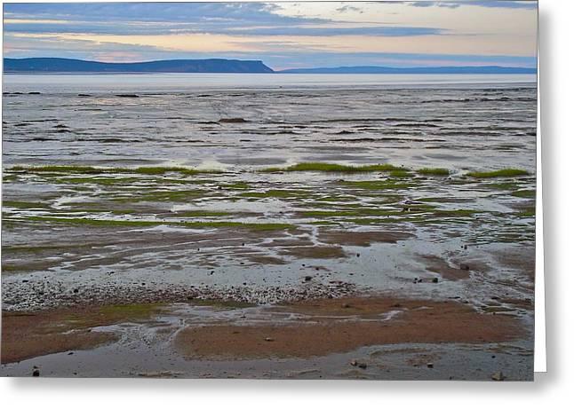 Minas Basin Greeting Cards - Minas Basin at Dusk in Fundy Bay near Grand Pre-NS Greeting Card by Ruth Hager