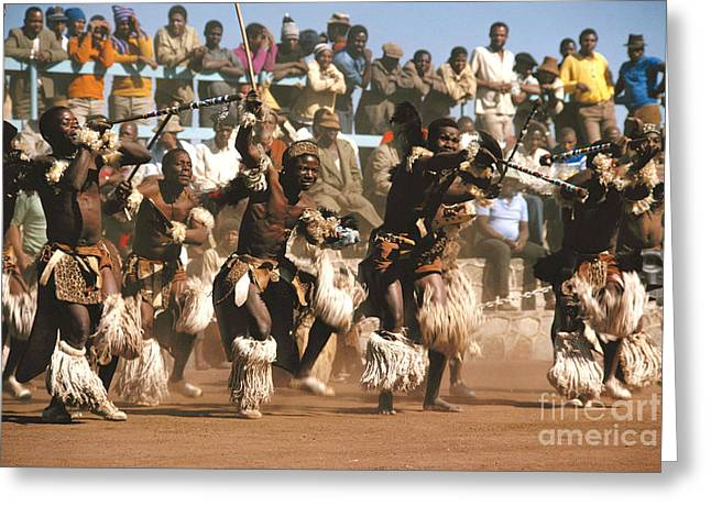 Mine Dancers South Africa Greeting Card by Susan McCartney