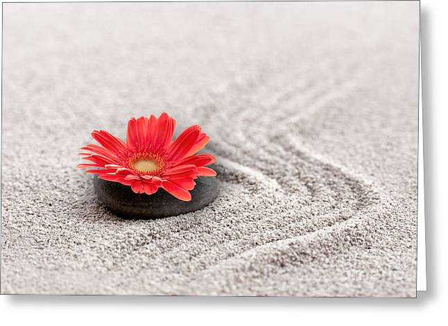 Aware Greeting Cards - Mineral flower Greeting Card by Delphimages Photo Creations