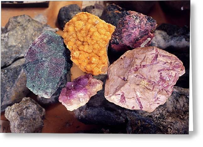 Mineral Samples Greeting Card by Dorling Kindersley/uig