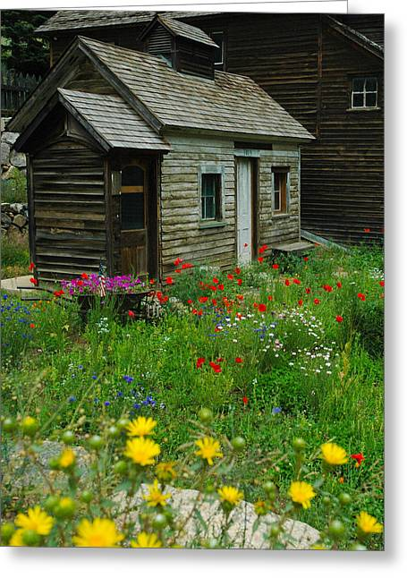 Mining Photos Greeting Cards - Miners cabin Silver Plume Colorado Greeting Card by Jeff Black