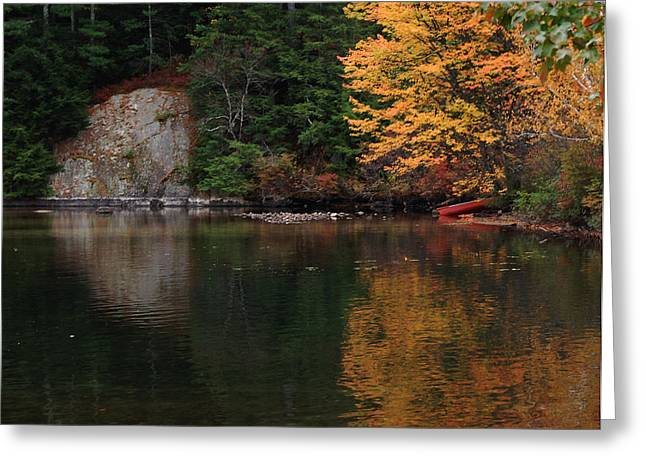 Ledge Greeting Cards - Minge Cove Greeting Card by Mim White