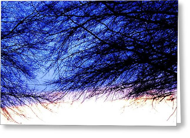 Mingle Greeting Cards - Mingling Trees Greeting Card by Morgan Carter
