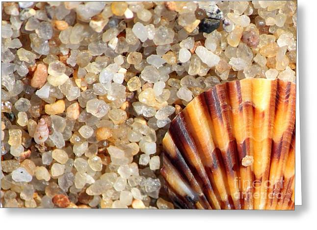 Agate Beach Greeting Cards - Mini Beach Vacation Greeting Card by Carol Groenen