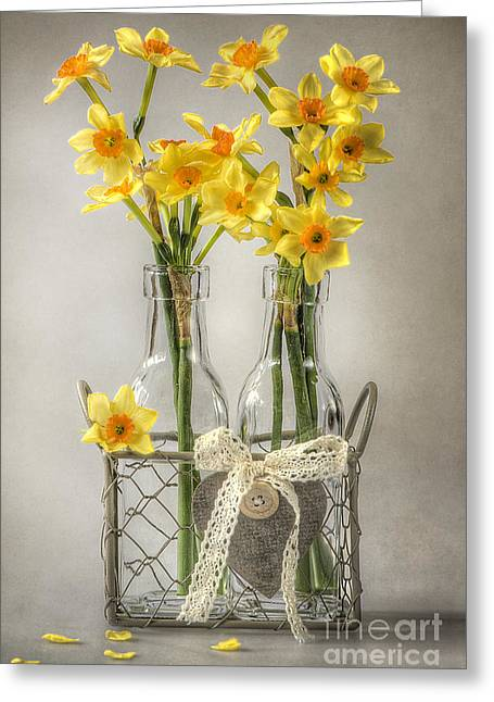 Rack Greeting Cards - Mini Daffs Greeting Card by Jacky Parker