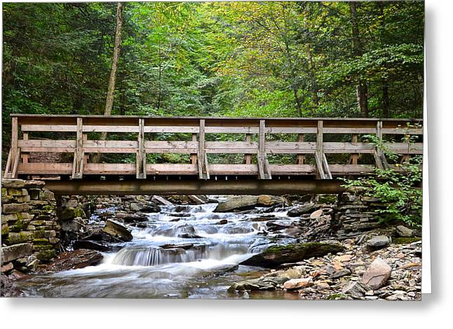 Cross River Greeting Cards - Mini Falls Greeting Card by Frozen in Time Fine Art Photography
