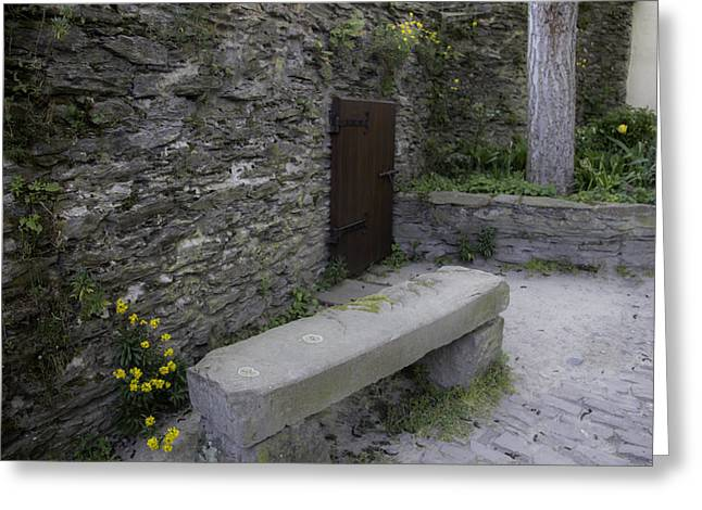 Wallflower Greeting Cards - Miniature Door at Marksburg Castle Greeting Card by Teresa Mucha