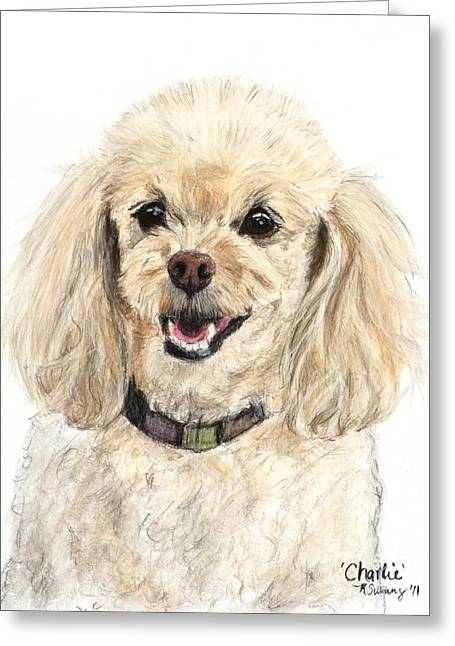 Breeds Pastels Greeting Cards - Miniature Poodle Painting Champagne Greeting Card by Kate Sumners