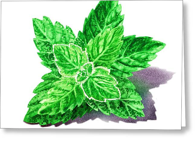 Mint Leaves Greeting Card by Irina Sztukowski