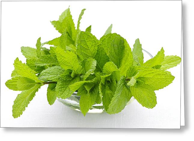 Fragrant Greeting Cards - Mint sprigs in bowl Greeting Card by Elena Elisseeva